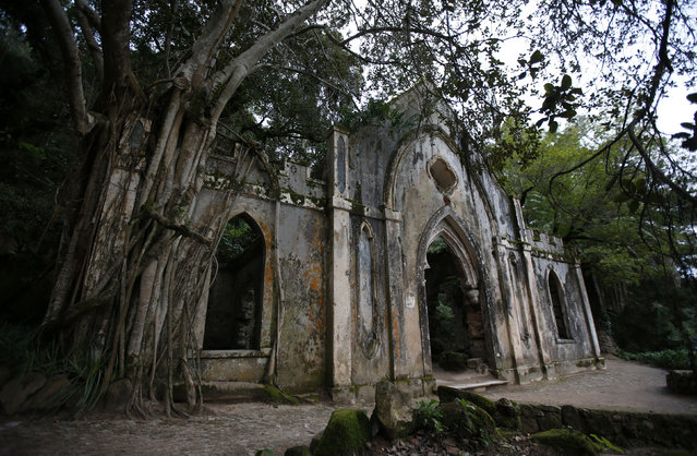 A general view of the chapel at Monserrate Palace in Sintra October 7, 2014. (Photo by Rafael Marchante/Reuters)