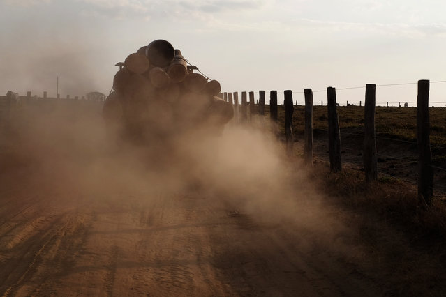 A logging truck lumbers down a road leading out of the Araribóia Indigenous Reserve, Maranhão, Brazil on August 7, 2015. (Photo by Bonnie Jo Mount/The Washington Post)