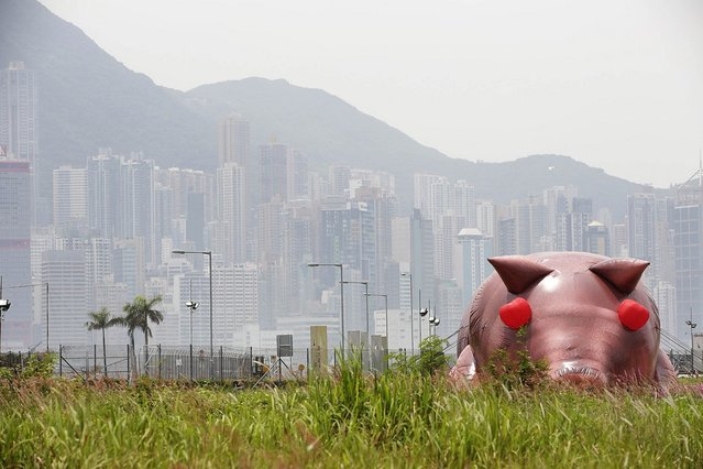 "An inflatable sculpture of a pig called ""'House of Treasures"" by Chinese contemporary artist Cao Fei on display as part of the ""Inflation!"" exhibition curated by Mobile M + on April 24, 2013 in Hong Kong. The inflatable artwork is one of six on display as part of the exhibition which is open from April 25, 2013 until June 9, 2013. (Photo by Jessica Hromas)"