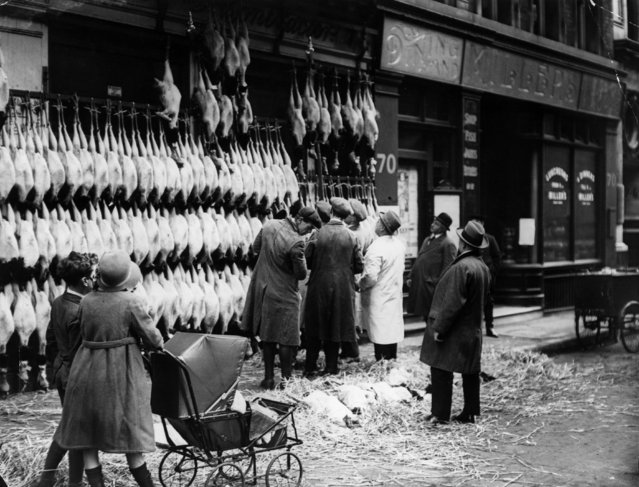 Christmas turkeys, hanging outside a poulterers in Watling Street, London, December 1923. (Photo by Topical Press Agency/Getty Images)