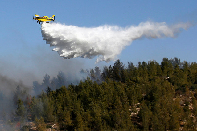 A firefighting plane fights a wildfire over a forest near Jerusalem November 24, 2016. (Photo by Ronen Zvulun/Reuters)