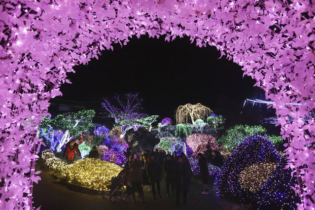 Visitors stroll through illuminated lights decorating trees to celebrate the upcoming Christmas and New Year holiday season at the Garden of Morning Calm in Gapyeong, South Korea, Sunday, December 18, 2016. The garden, the oldest private garden in the country, houses about 5,000 kinds of plants. (Photo by Ahn Young-joon/AP Photo)