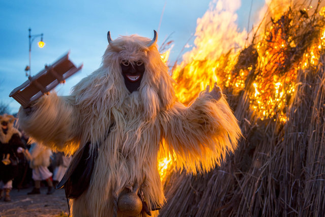 A reveler wearing sheepfur costume is seen in front of a bonfire on which they burn a coffin symbolizing winter during the closing ceremony of the traditional carnival parade in Mohacs, 189 kms south of Budapest, Hungary, 07 February 2016. (Photo by Tamas Soki/EPA)