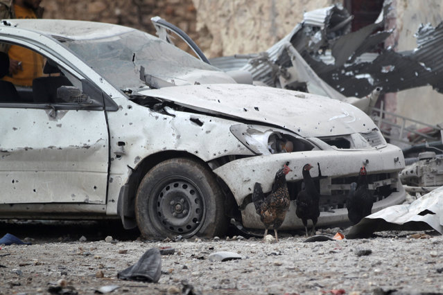 Chickens stand near a damaged vehicle after a car bomb explosion in Jub al Barazi east of the northern Syrian town of al-Bab, Syria January 15, 2017. (Photo by Khalil Ashawi/Reuters)