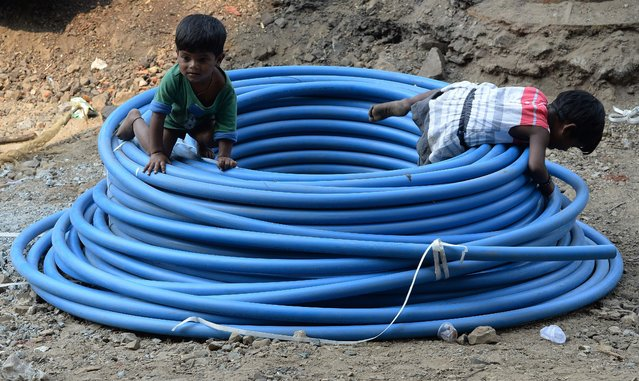Indian homeless siblings play inside a coil of pipe at the roadside in Mumbai on February 29, 2016. (Photo by Indranil Mukherjee/AFP Photo)