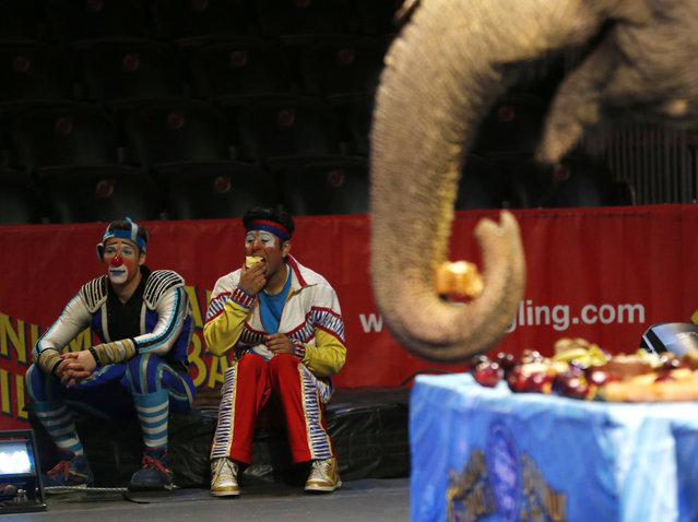 Clowns rest while a Ringling Bros. and Barnum & Bailey elephant eats during a brunch at Prudential Center, Thursday, March 10, 2016, in Newark, N.J. (Photo by Julio Cortez/AP Photo)