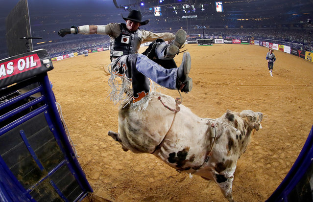 Marco Antonio Eguchi of Brazil gets bucked off of Bottoms Up in the first round of the PBR Frontier Communications Iron Cowboy at AT& T Stadium on February 18, 2017 in Arlington, Texas. (Photo by Tom Pennington/Getty Images)