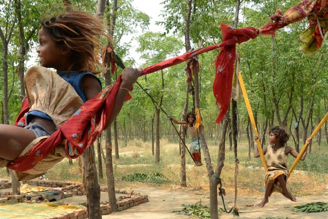 Children of Indian laborers play on make-shift swings in Amritsar, India, May 12, 2015. (Photo by Narinder Nanu/AFP Photo)