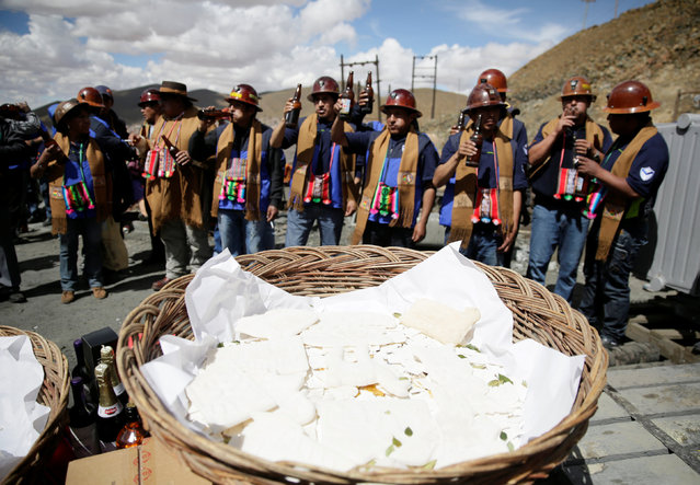 Independent miners toast in front of an offering to bless the mine by offering animal sacrifice as part of Andean carnival celebrations, outside the Mina Itos on the outskirts of Oruro, Bolivia February 24, 2017. (Photo by David Mercado/Reuters)