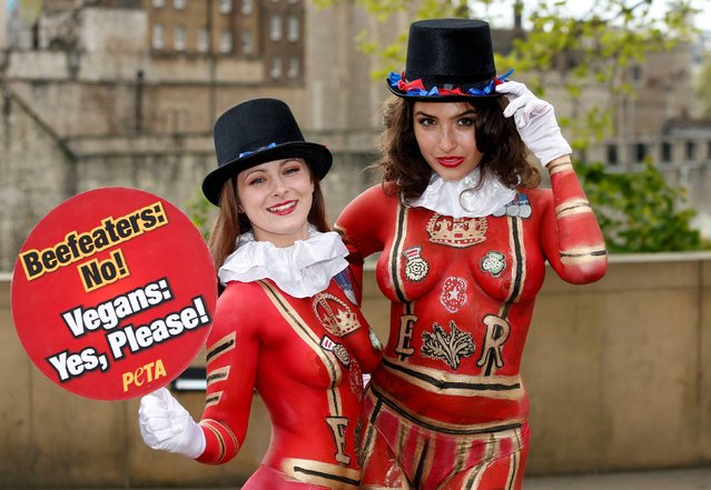 Two models, both members of PETA, with their bodies painted to resemble Yeoman Warders, promote meat free meals in conjunction with the run up to St George's Day outside the Tower of London, on April 22, 2014. (Photo by Jonathan Brady/PA Wire)