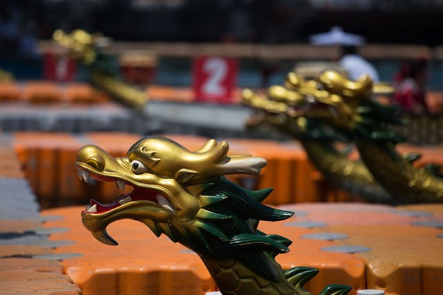 Dragon heads adorn the front of the racing boats on July 5, 2015 in Hong Kong, Hong Kong. (Photo by Taylor Weidman/Getty Images for Hong Kong Images)