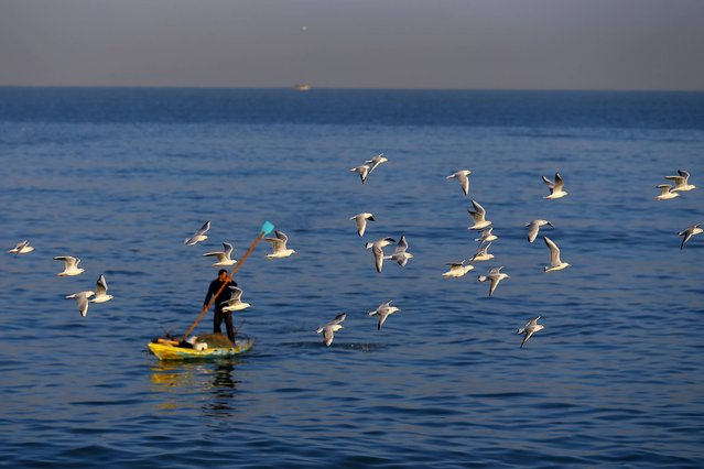 Seagulls fly over a Palestinian fisherman in Gaza City on January 30, 2017. (Photo by Mohammed Abed/AFP Photo)