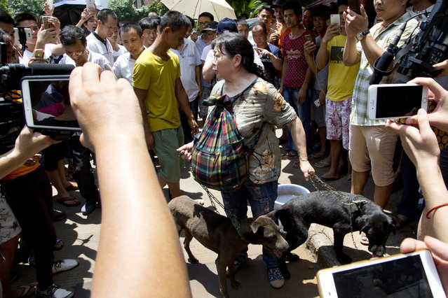 A dog lover activist is surrounded by people after she bought dogs from dog sellers at a market during a dog meat festival in Yulin in south China's Guangxi Zhuang Autonomous Region, Tuesday, June 21, 2016. (Photo by Andy Wong/AP Photo)