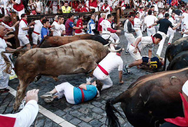 Participants run with fighting bulls during the bull-run of the annual San Fermin Festival in Pamplona, Spain on July 07, 2016. The San Fermin Festival is held annually from 06 to 14 July in commemoration of the city's patron saint. Hundreds of thousands of visitors from all over the world attend Spain's most famous fiesta, the San Fermin bull-running festival. (Photo by Burak Akbulut/Anadolu Agency/Getty Images)