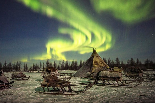 An empty camp is shown beneath a colourful sky in Siberia, December 2016. (Photo by Timothy Allen/Barcroft Productions)