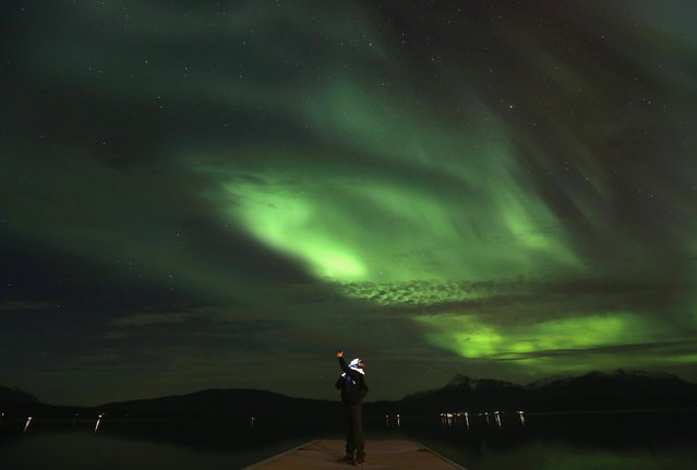 A tourist takes photos of an Aurora Borealis display (Northern Lights) over the Bals-Fiord north of the Arctic Circle, near the village of Mestervik late September 30, 2014. (Photo by Yannis Behrakis/Reuters)