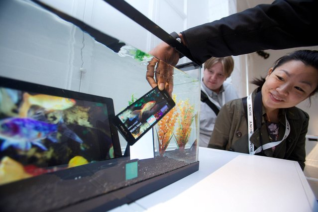 In this photo provided by Newscast Creative, the new Sony Xperia Z3v waterproof smartphone, available through Verizon and T-Mobile, is submerged in a fish tank during a demonstration for the media, Thursday, October 9, 2014, in New York. Both the Verizon and standard T-Mobile versions let people play Sony PlayStation 4 games through the phone while on the porch or in another room from the TV. The phones also have 20.7 megapixel cameras and will be available nationwide October 23. (Photo by Anders Krusberg/AP Photo/Newscast)