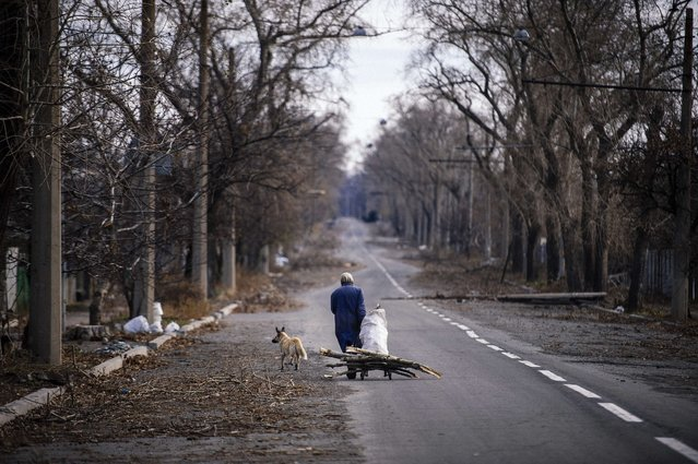 An elderly woman pulls а cart with firewood near the Donetsk airport, in eastern Ukraine on November 3, 2014. EU foreign policy chiefs blasted Moscow's recognition of separatist elections in Ukraine on November 3, saying the polls, which sought to put a legal veneer on the bloody pro-Russian rebellion, violated a peace agreement. (Photo by Dimitar Dilkoff/AFP Photo)