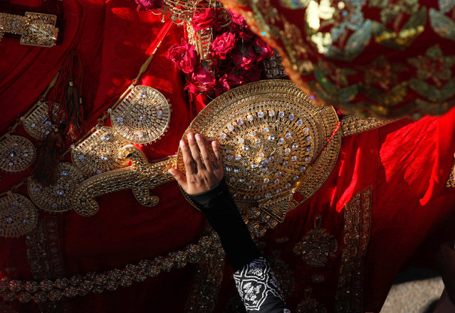 A hand of a Shi'ite Muslim woman touches the gold-ornamentation of sword and shield, placed on a symbolic sacred horse for a good luck, during Chelum, a procession to mark the fortieth day after the death of Imam Hussain, grandson of the Prophet Muhammad, in Karachi Pakistan November 21, 2016. (Photo by Akhtar Soomro/Reuters)