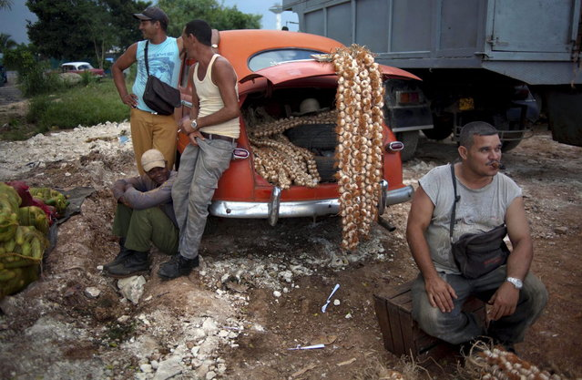 In this September 30, 2013 photo, farmers wait for customers next to their 1950s Chevrolet loaded with garlic for sale at the 114th Street Market on the outskirts of Havana, Cuba. The market s bustle is a result of economic reforms begun in 2010 by President Raul Castro, which includes relaxing rules on private farming. (Photo by Ramon Espinosa/AP Photo)
