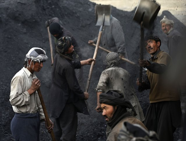 Labourers shovel coal onto a truck at a coal dump site outside Kabul January 19, 2015. (Photo by Mohammad Ismail/Reuters)