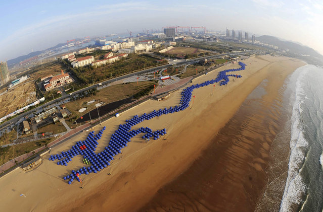 About 900 tents, placed to form the shape of a Chinese dragon, line a beach in Qingdao, Shandong province, October 13, 2012. The formation established a new Guinness World Record for the largest jigsaw made of tents, local media reported. (Photo by Reuters/China Daily)