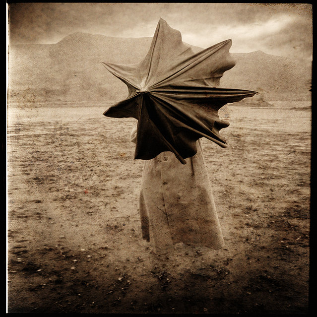 """""""Flying Umbrella"""". (Photo and caption by Yves Lecoq)"""