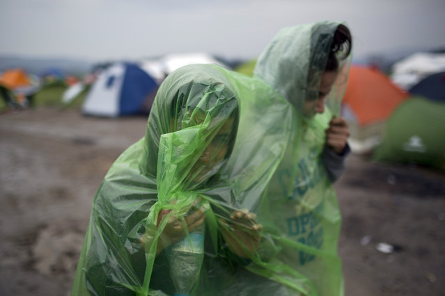 Two girls wearing raincoats walk in front of tents, as refugees wait to be allowed to cross the the Greek-Macedonian border near the northern Greek village of Idomeni , Wednesday, February 24, 2016. The Greek interior ministry said about 12,000 people have been stranded in Greece since neighbor Macedonia began turning Afghan immigrants away at the border and slowing the number of crossings for others heading to central and northern Europe. (Photo by Petros Giannakouris/AP Photo)