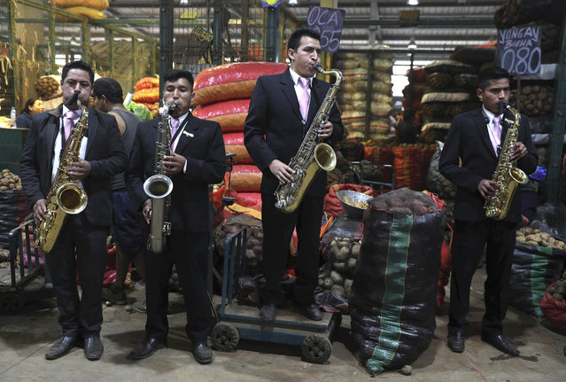 A group of contract musicians serenade potato vendors at a produce market on the outskirts of Lima, Peru, Thursday, May 30, 2019, marking International Day of the Potato. Peru is the country where the tuber was first discovered over 7,000 years ago. (Photo by Martin Mejia/AP Photo)