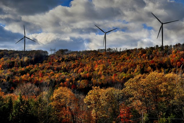 Wind turbines turn above a colorful landscape near Oakland, Md. on October 28, 2017. (Photo by Michael S. Williamson/The Washington Post)