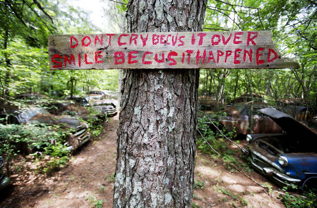A message greets visitors along a trail at Old Car City, the world's largest known classic car junkyard Thursday, July 16, 2015, in White, Ga. Six miles of trails wind through the 32 acre forest which is home to over 4,000 classic cars. (Photo by David Goldman/AP Photo)
