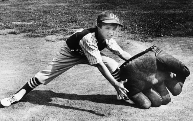 Jimmy Rooney, 9, of Newburyport, is overwhelmed by a baseball fielder's glove that is a family heirloom on September 8, 1978. The glove is about two feet across, weighs 10 pounds and carries the faintly discernible auto-graphs of many famous baseball players, among them Babe Ruth, Bob Veach and Bob Feller. Jimmy's grandfather bought the glove years ago for $10 and occasionally displayed it in his Newburyport hardware store. The big mitt is about 50 years old. (Photo by AP Photo)