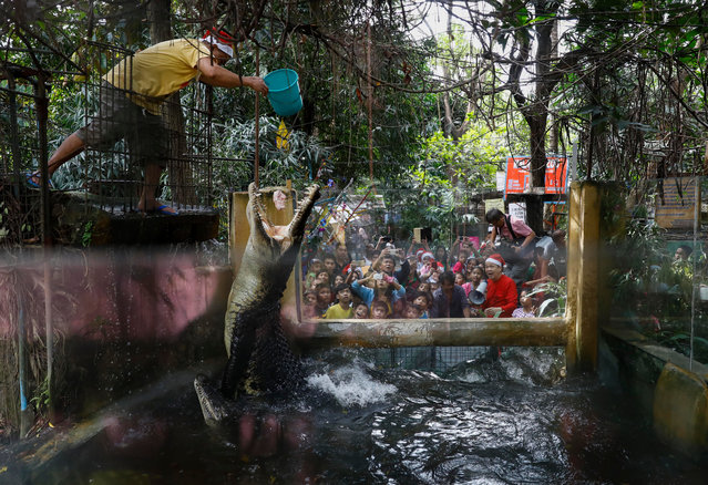 A zoo staff feeds crocodiles as visitors look on at the Malabon Zoo in Malabon City, north of Manila, Philippines 21 December 2017. Wearing Santa Claus hats for the upcoming Christmas season, owner Manny Tangco (R, holding megaphone) and some select animals gave visitors a tour of the 28-year-old zoo. (Photo by Rolex Dela Pena/EPA/EFE)