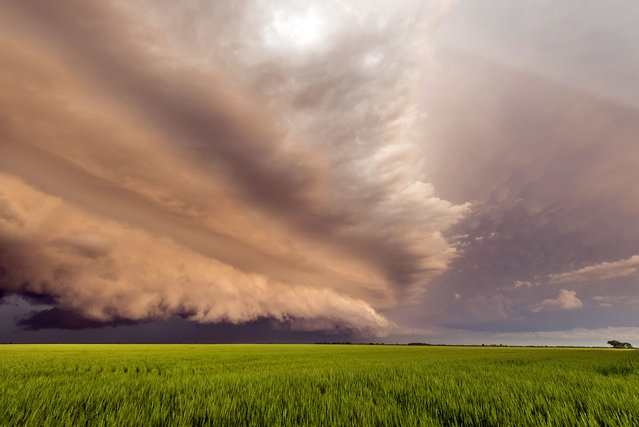 Incredible shelfcloud from a supercell in northern Kansas at sunset. (Photo by Dennis Oswald/Caters News)