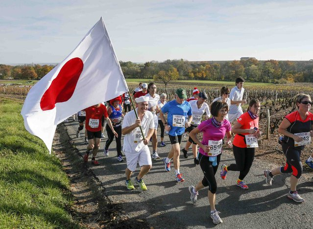 Competitors, including one with a Japanese flag, run along the vineyard during the Marathon International du Beaujolais race in Arnas, November 22, 2014. (Photo by Robert Pratta/Reuters)