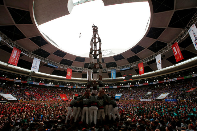 """Castellers de Sants form a human tower called """"castell"""" during a biannual competition in Tarragona city, Spain, October 2, 2016. (Photo by Albert Gea/Reuters)"""