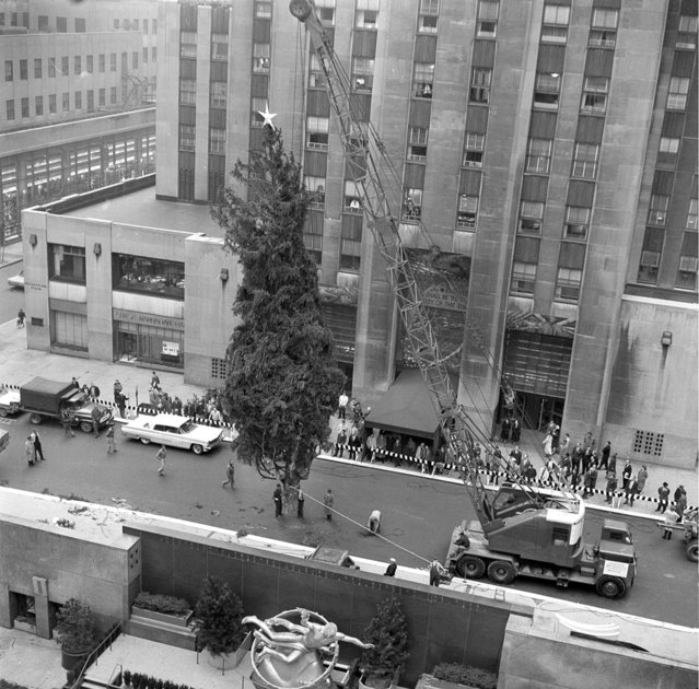 A 65-foot Norway Spruce, the 27th annual Christmas tree at Rockefeller Center, is lowered into place at Rockefeller Plaza in New York City, November 29, 1960.  The tree, which came from Harford, Pa., and weighs about two-and-a-half tons, will be lit December 8.  In the foreground is the statue of Prometheus overlooking the ice skating rink. (Photo by AP Photo)