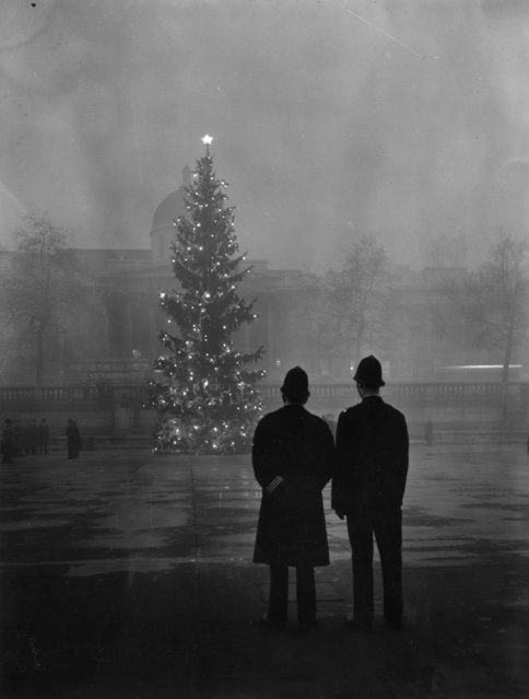 Two policemen regard London's 64ft Christmas tree, a gift from Norway, illuminated in Trafalgar Square, in front of the National Gallery, 1st December 1948. (Photo by Warburton/Topical Press Agency/Getty Images)