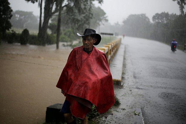 A man walks under the rain as Storm Eta passes through Tela, Honduras on November 4, 2020. (Photo by Jorge Cabrera/Reuters)