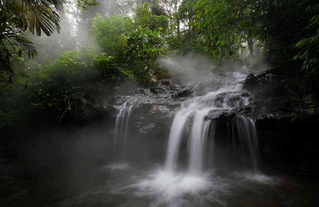 A view of a waterfall in the protected forest at the Welirang mountain in Malang, East Java province, February 10, 2010. (Photo by Sigit Pamungkas/Reuters)