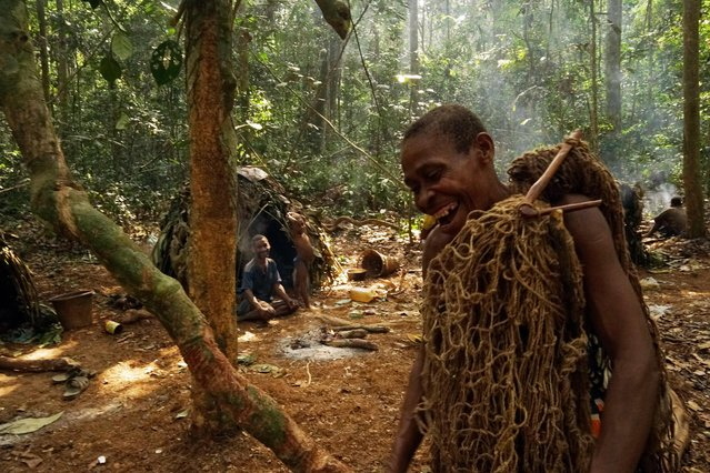 Baka man prepares to go hunting with his net in, Sangha Forest, Central African Republic, February 2016. (Photo by Susan Schulman/Barcroft Images)