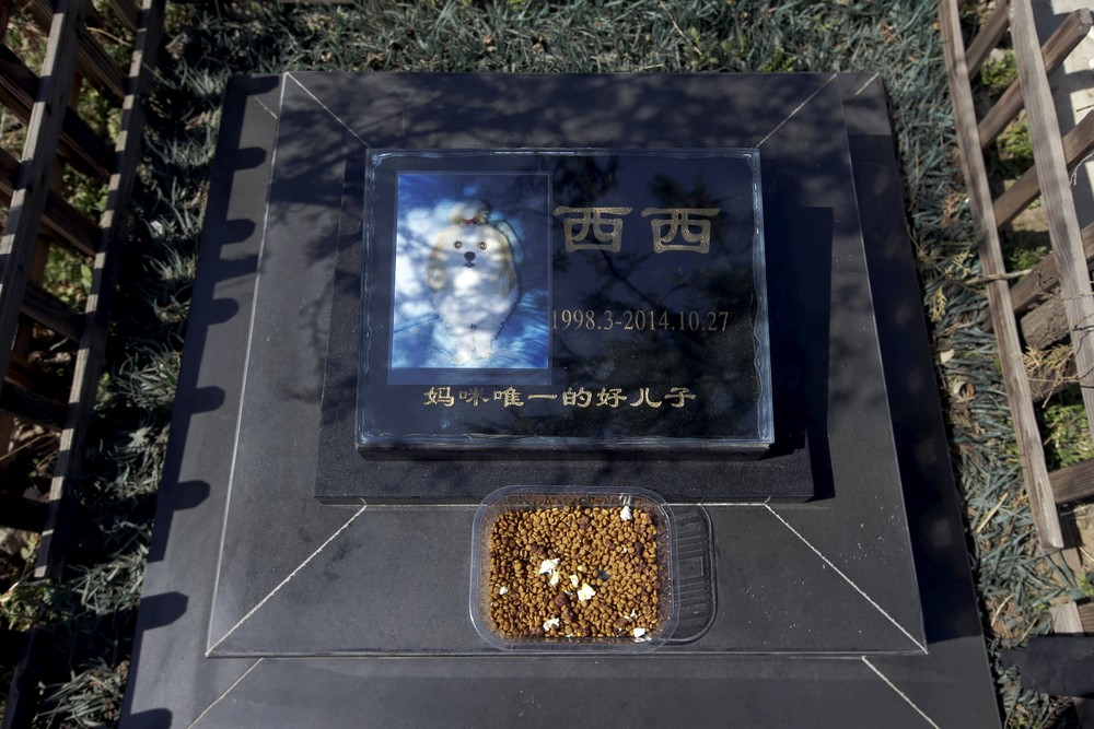 Pet Cemetery in China