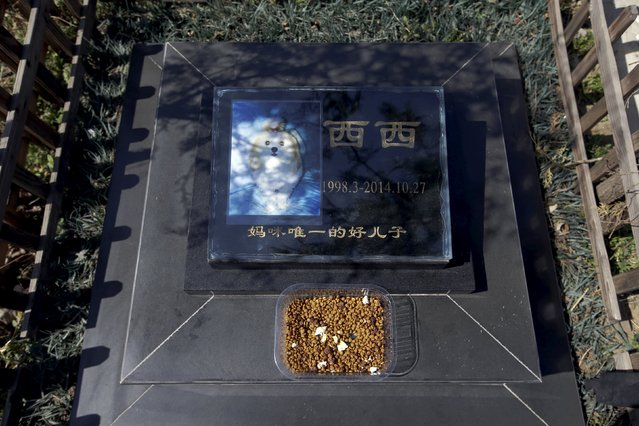 "Food is placed on the tomb of pet dog Xixi at Baifu pet cemetery ahead of the Qingming Festival on the outskirts of Beijing, China March 26, 2016. The Chinese characters on the gravestone read: ""Mommy's only good son"". (Photo by Jason Lee/Reuters)"