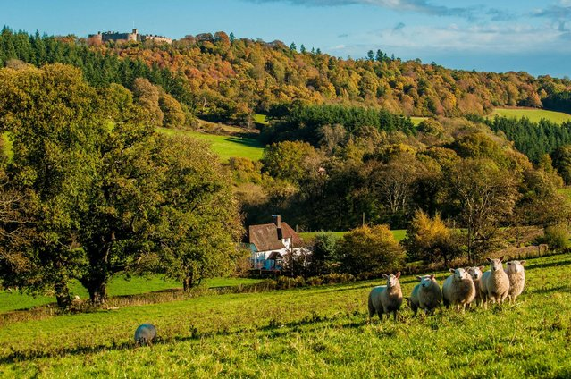 """""""The Ceiriog Valley"""". (Photo by Will Hawkes/ESRC)"""