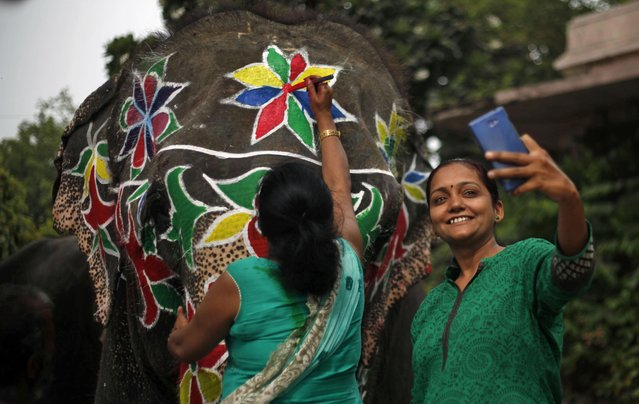 An Indian woman take a selfie with a decorative elephant as another woman paints it on the eve of the annual Rath Yatra, or Chariot procession in Ahmadabad, India, Friday, July 17, 2015. Amid tight security arrangements, devotees will seek blessings during the chariot procession of Lord Jagannath, scheduled to begin Saturday. (Photo by Ajit Solanki/AP Photo)