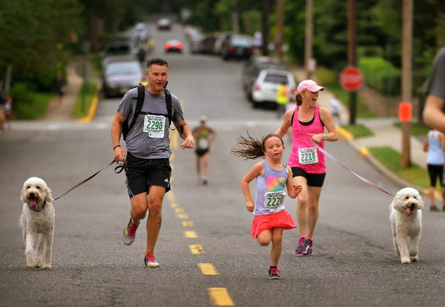 Lexi McGinty (age 6) of Tenafly, N.J., runs with her mother Sandy McGinty, right, (with her dog Scout) and her mother's friend Anthony Bosco, left,  with his dog Simon, towards the finish line  during the event of Tenafly 5 K Run and Dog Walk at Tenafly Middle School. (Photo by Mitsu Yasukawa/The Record of Bergen County via AP Photo)
