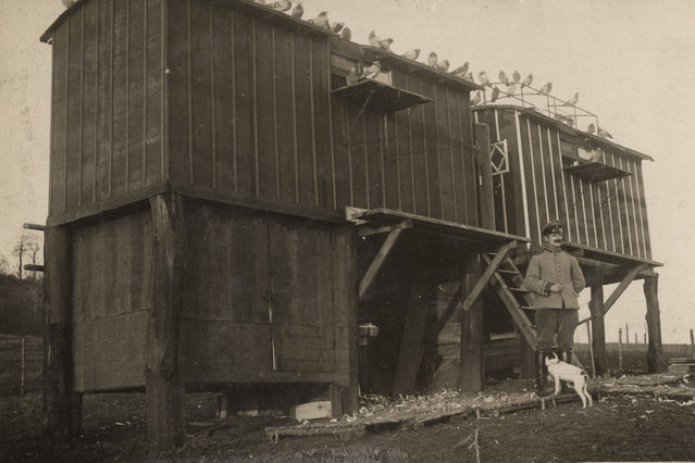 A German pigeon loft is pictured on the Western Front, in this 1916 handout picture. This picture is part of a previously unpublished set of World War One (WWI) images from a private collection. The pictures offer an unusual view of varied and contrasting aspects of the conflict, from high tech artillery to mobile pigeon lofts, and from officers partying in their headquarters to the grim reality of life and death in the trenches. The year 2014 marks the centenary of the start of the war. (Photo by Reuters/Archive of Modern Conflict London)