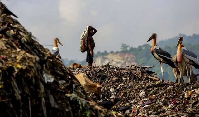 A boy looks for recyclable materials that he can collect and sell at a landfill in Gauhati, India, on August 27, 2014. (Photo by Anupam Nath/Associated Press)