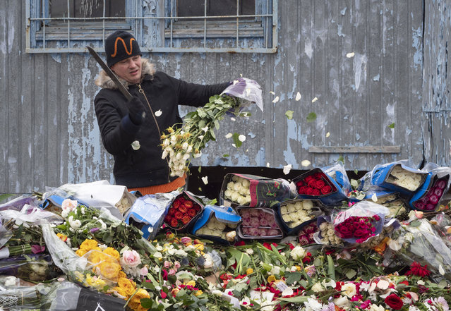 A flower shop employee cuts up unsold flowers in St. Petersburg, Russia, Monday, April 13, 2020. The flowers were destroyed after flower shops in St. Petersburg were closed according to the order of the city authorities to close non-grocery stores to limit people shopping due to the spread of coronavirus. (Photo by Dmitri Lovetsky/AP Photo)