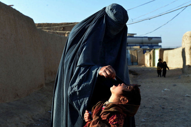 An Afghan health worker administers the polio vaccine to a child during a vaccination campaign in Kandahar on January 17, 2018 Polio, once a worldwide scourge, is now endemic in just three countries – Afghanistan, Nigeria and Pakistan. (Photo by Javed Tanveer/AFP Photo)
